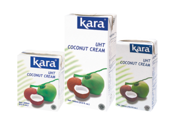 Kara coconut cream in tertra box carton